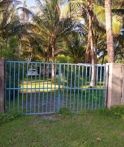 Casa Palmita