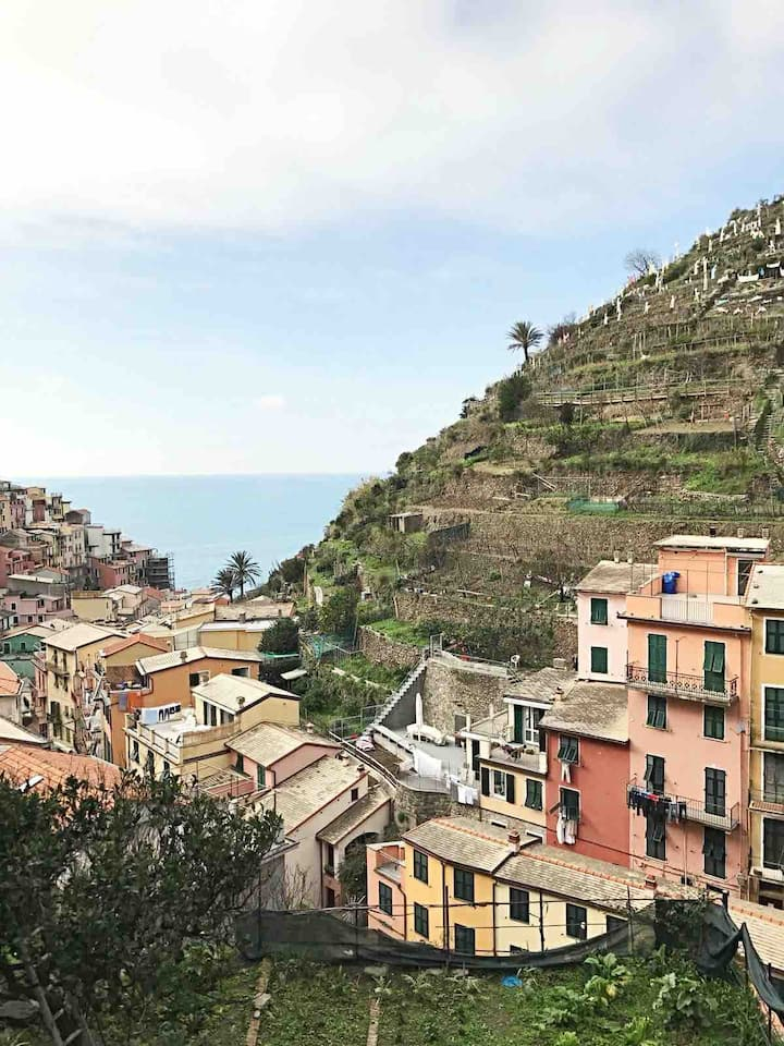 """Pearl Gray House"" in Manarola(5terre)."