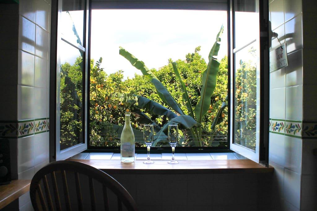 Da janela da cozinha pode Respirar a natureza -From the kitchen window you can Breathe Nature-