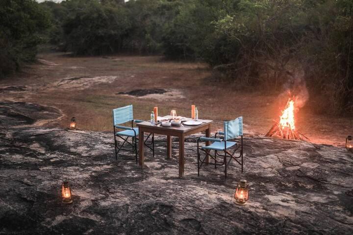 Luxury Eco Camp in Yala - 20% Off