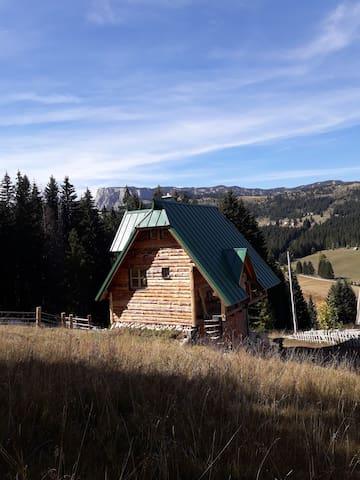 Mountain story apartment