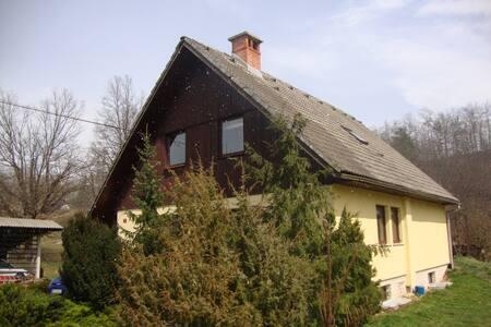 Koci's place - Radovljica - 其它