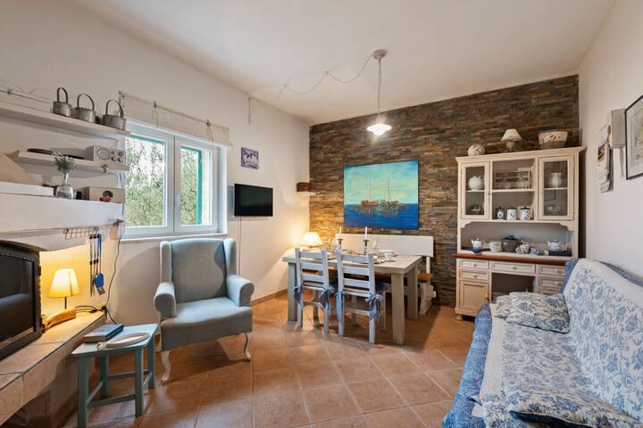 Maison de vacances moderne à Vrana avec lac à proximité