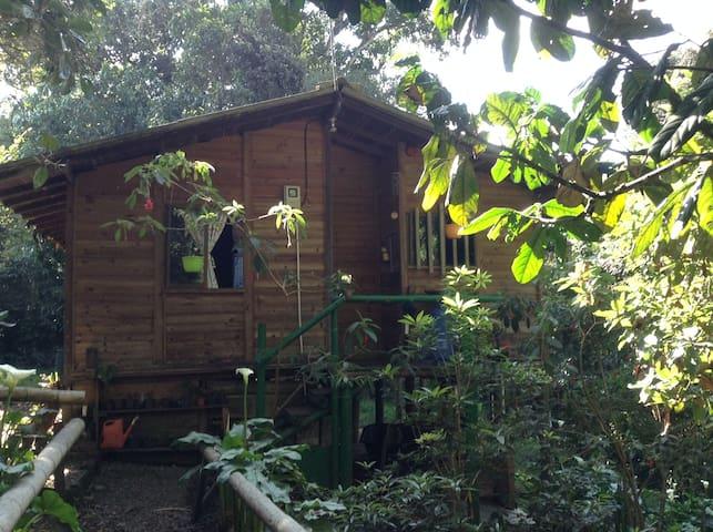 Cabaña en Reserva Natural El Robledal