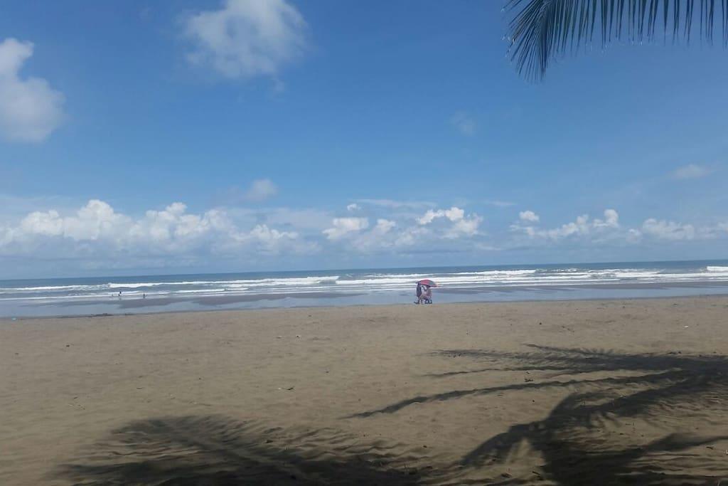Front side beach condominum