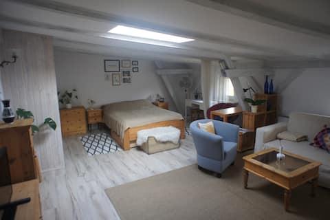Cosy attic in the city center (48m).