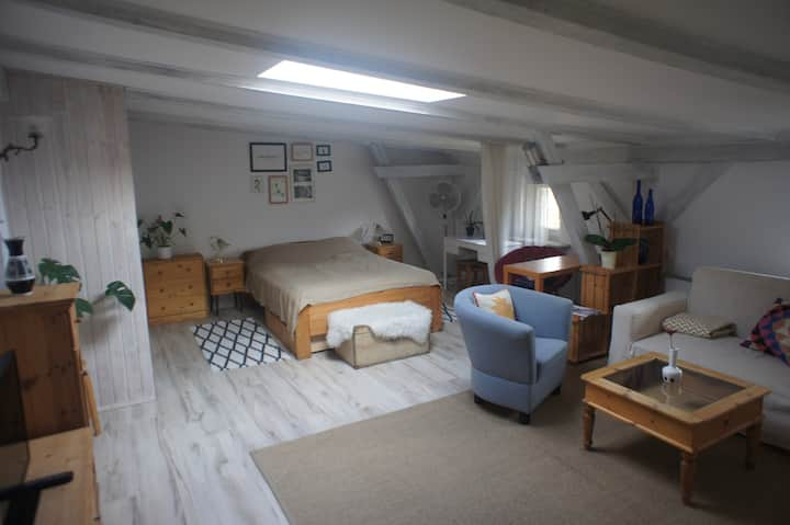 Cosy attic in the city center (48m).