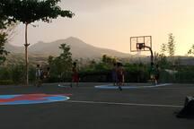 Whole court