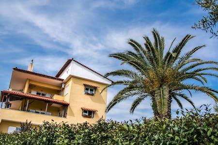 Villa / Nature / Private / View / Jacuzzi / Greek - Halkidiki - Huvila