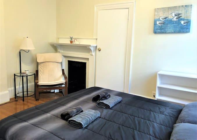 Classical Brookline Apartment in Coolidge Corner