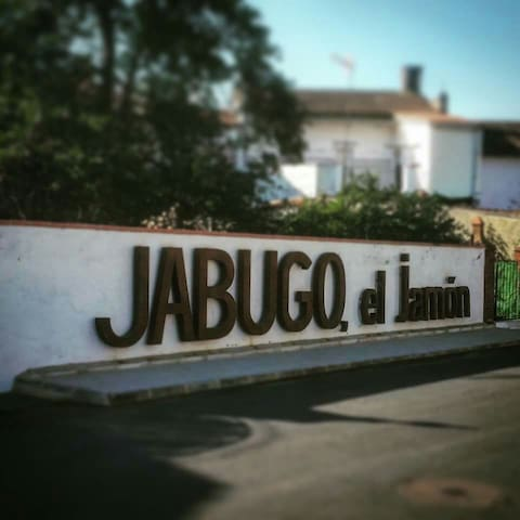 Taste the authentic Iberian ham of Jabugo House - Jabugo - Villa