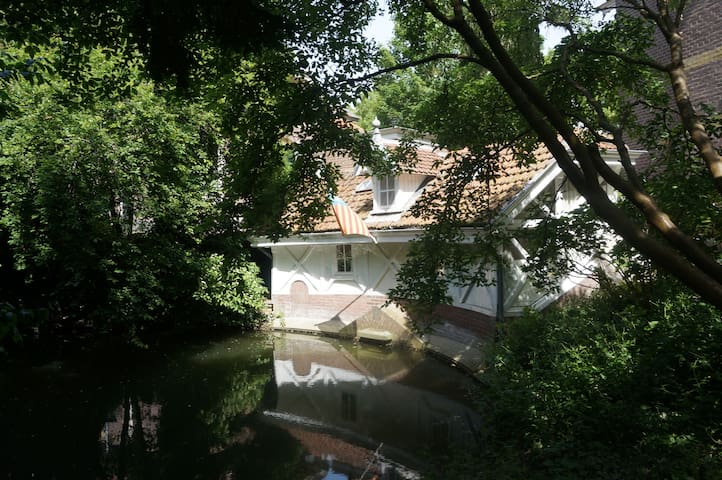 The Swan's House
