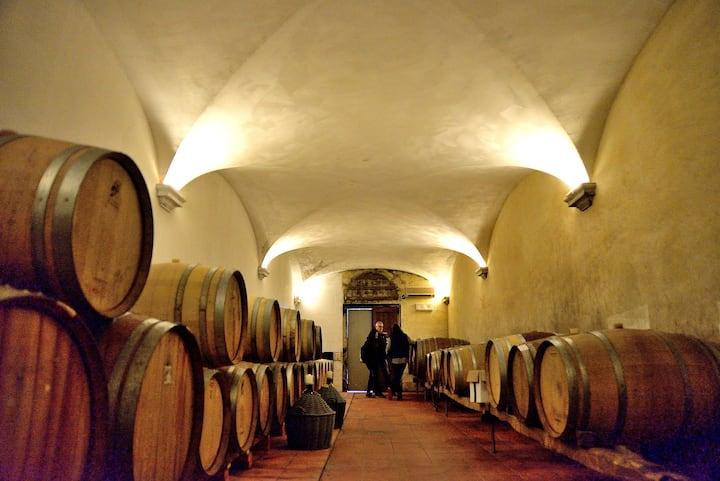 Visit the cellars