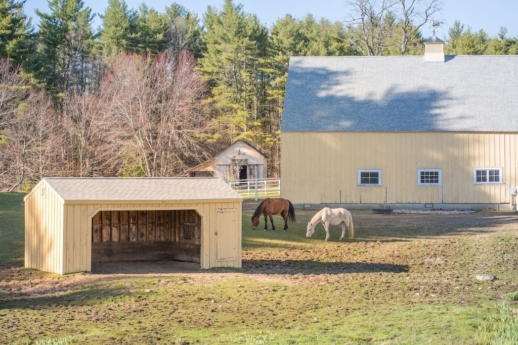 Outside your window are grazing horses and a restored 19th century barn