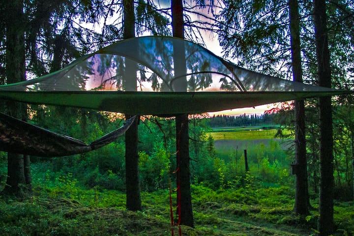 Tentsile Tree Tent Finland  Kommee Kurki