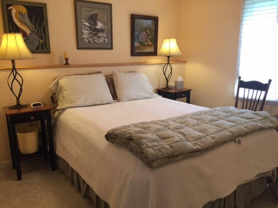 Guest room #2 - queen bed