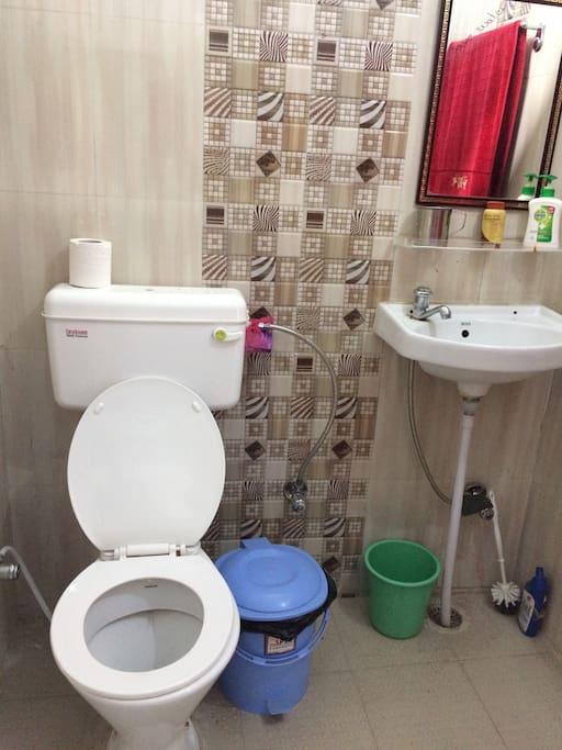 english style toilet