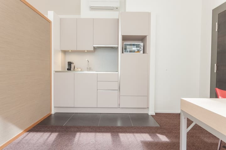 Studio Type Serviced Apartment, Unterstrass