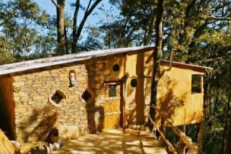Cabaña la Rana/El Bosque de las Ranas