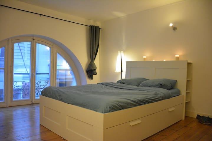 Large flat shared in city center. - Nantes - Leilighet
