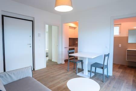 Modern apartment in Lugano(Residenza Ceresio)