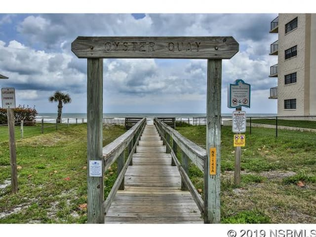 Beach Access & Pet Friendly Horizon Home in NSB 🌊