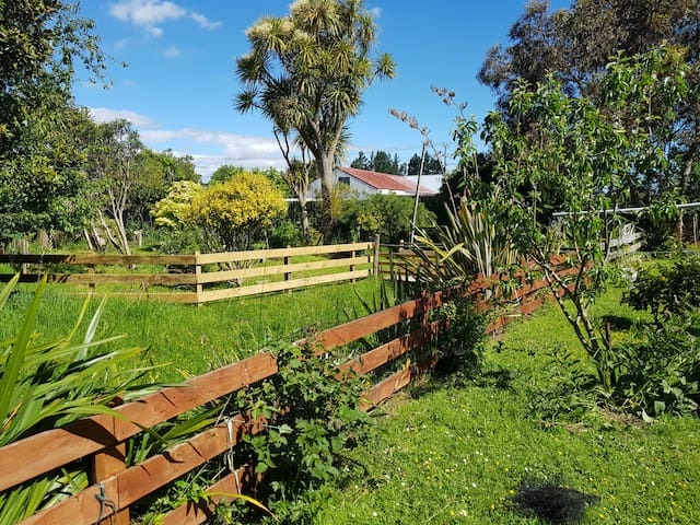 Part of our garden with lots of fresh veges and fruit trees.
