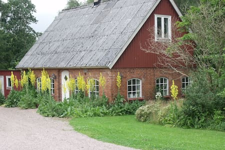 Picturesque cottage in the beech woods