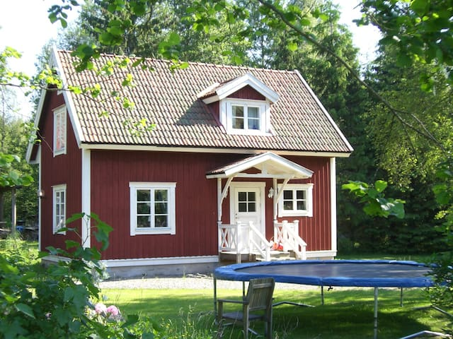 Classical Swedish house near forest and lakes