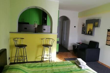 LJUBA lux appartment, edition green