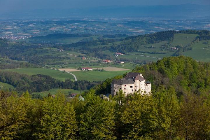 Edles Ritterzimmer Burg Plankenstein & Frühstück