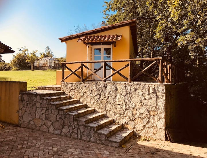 Relaxing guesthouse with a pool near Rome