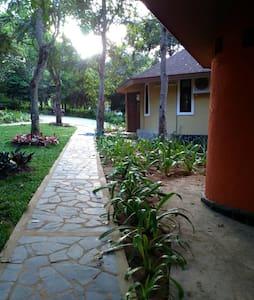 oho nanglae mountain view - Mueang Chiang Rai