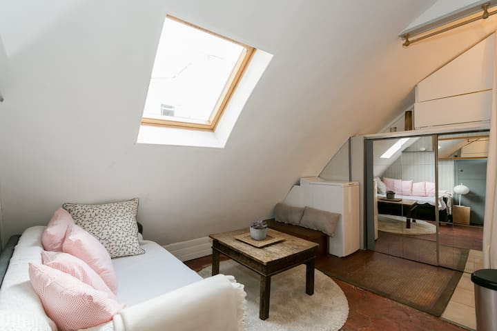 Lovely cosy apartment under Parisian roofs