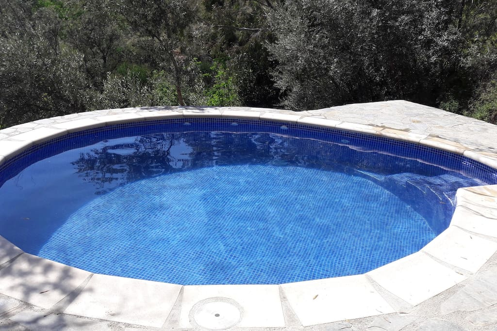 This is our brand new pool!