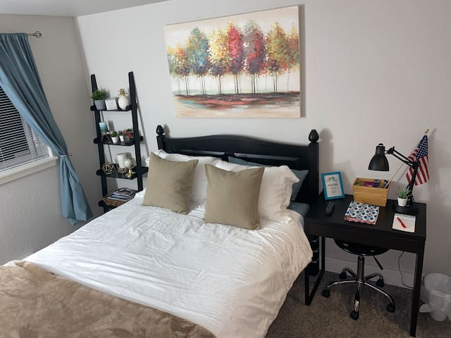 RELAXING 1 BED/BATH | NEAR DOWNTOWN, T-DOME & UPS