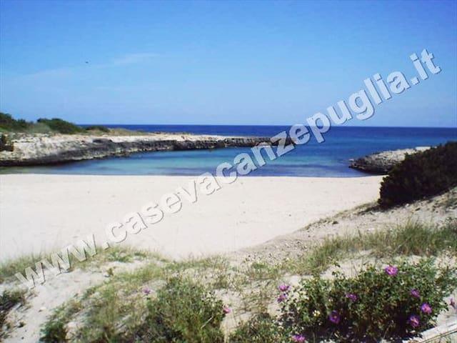 Spiagge della località