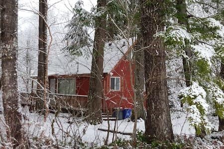 Charming Cabin by Mt Rainier - Ashford
