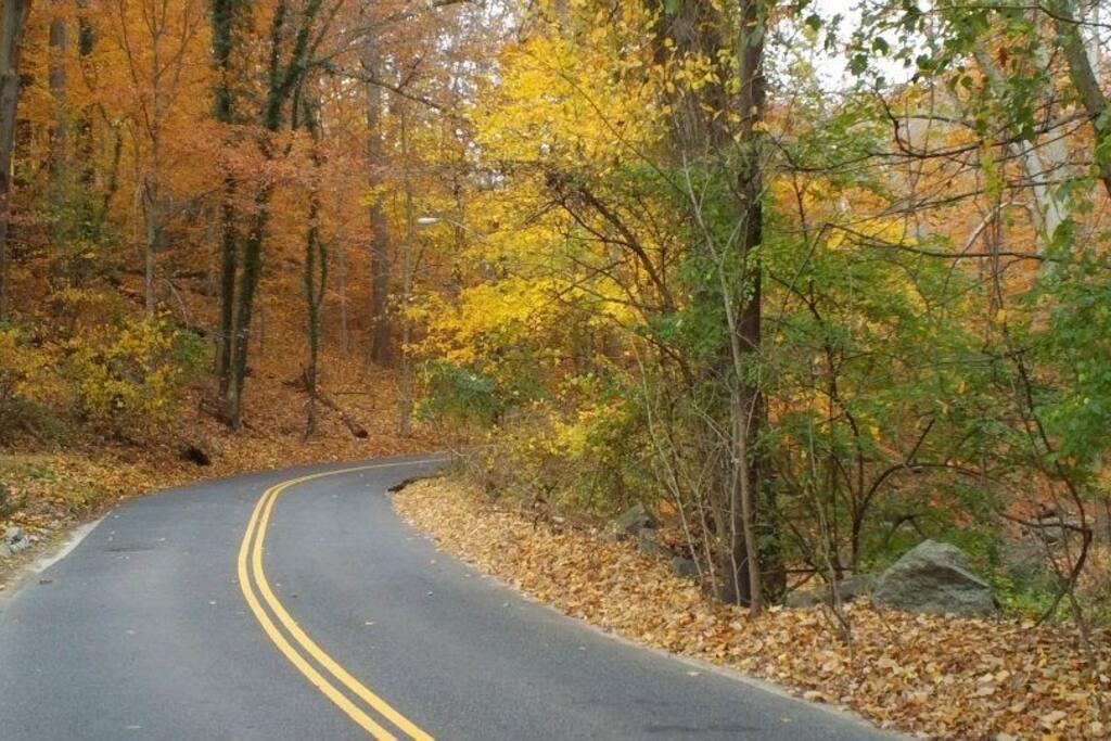 scenic drives, beautiful in any season