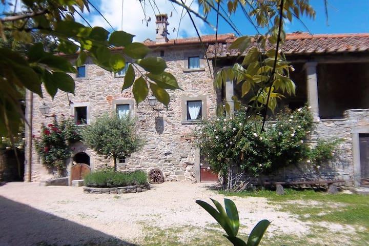 Appartement in het historische middeleeuwse dorp Serignana met zwembad en tuin