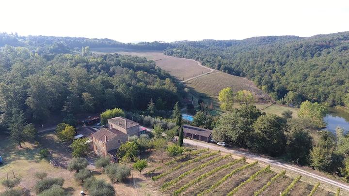 Agriturismo Siena Apartment 4 pax