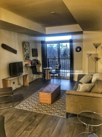 1 Bedroom apartment in brand new condo building