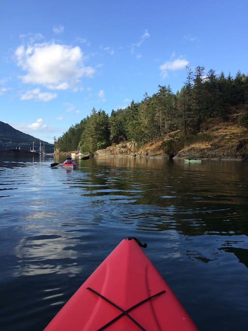 paddling on maple bay