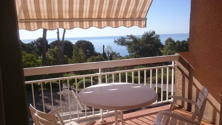 Coquet appartement T3 face mer, coin de paradis !