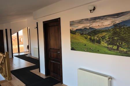 Grid House, Fagaras, Transilvania - One Room