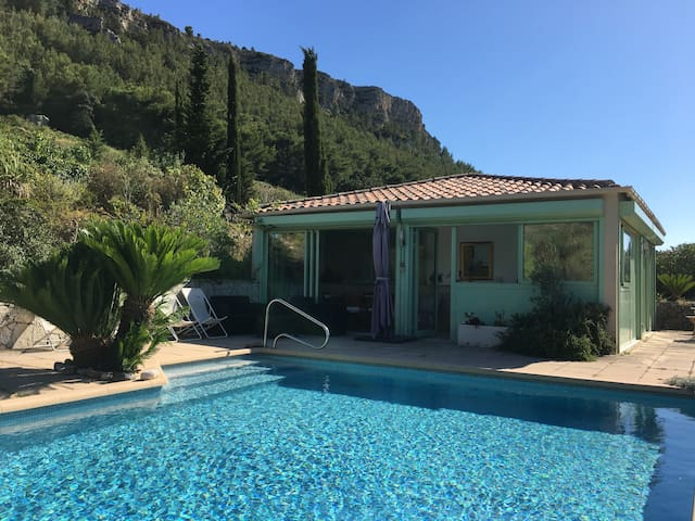 Cassis Charlemagne