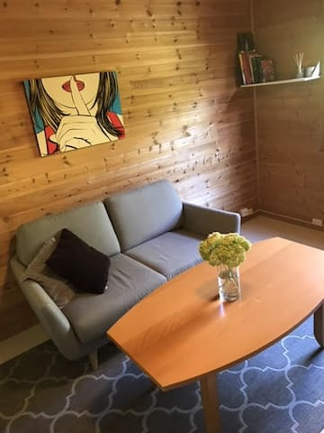Close to city centre, room for two (three), Oslo.