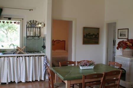 appartamento il ginepro - San Donato Val di Comino - Appartamento