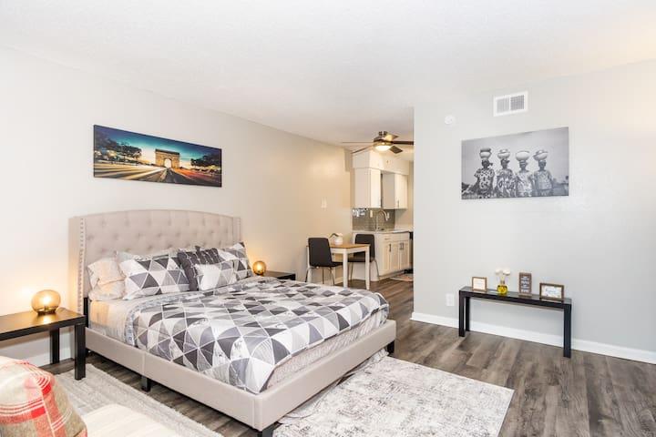 Downtown Austin Luxury Apartment (A)