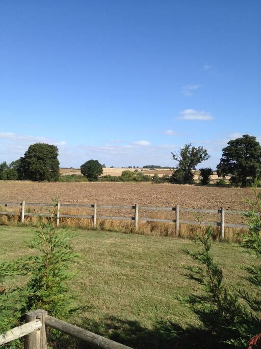 Grounds around cottage